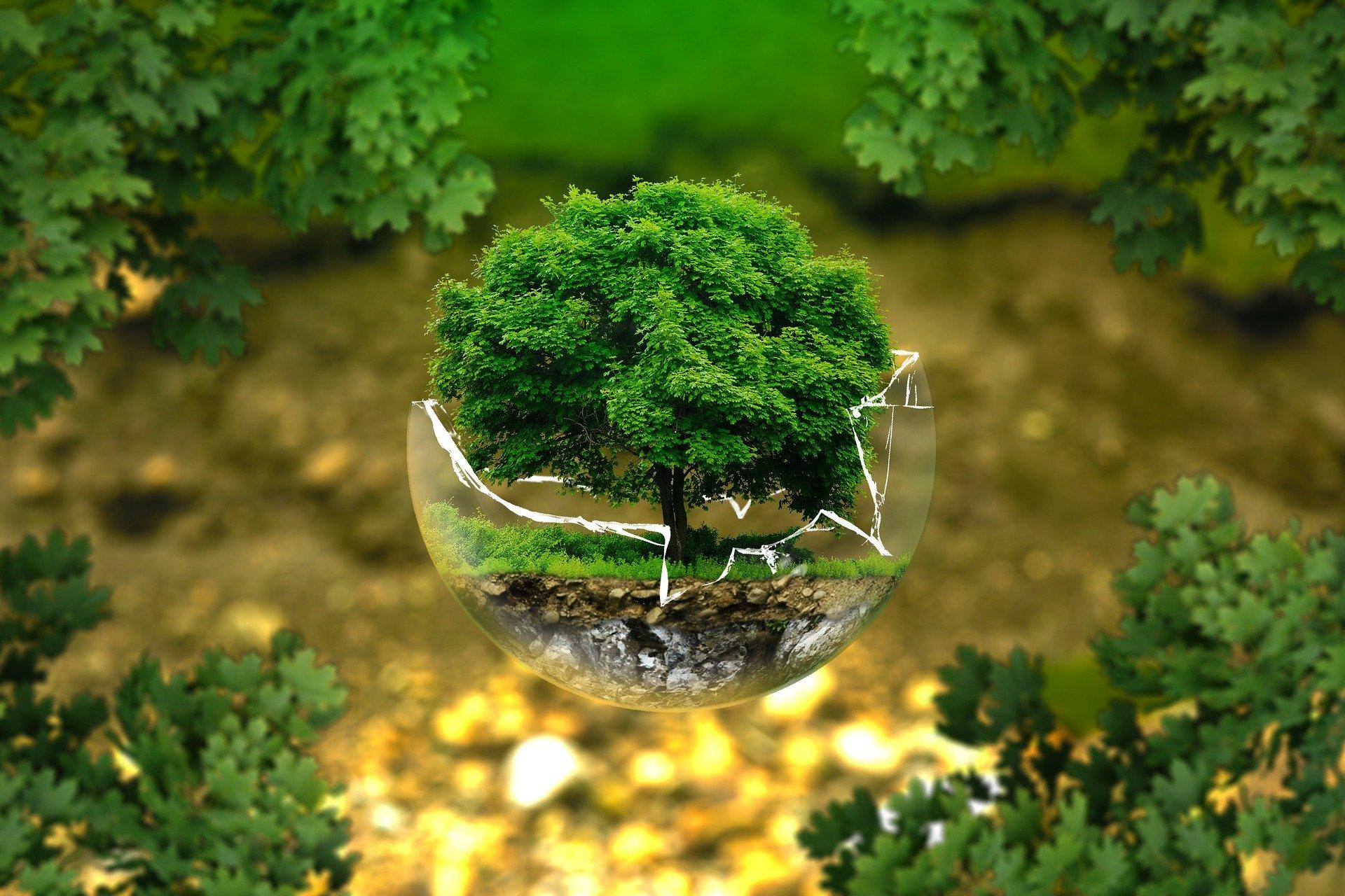 Revalorisation des déchets : les bonnes initiatives